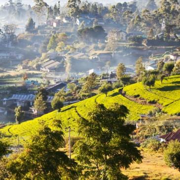 Cosa vedere in Sri Lanka
